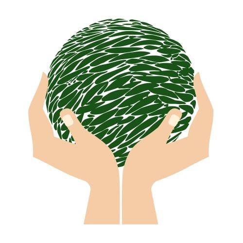 Green week globe