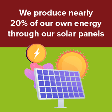 We produce 20% of our own energy through out solar panels